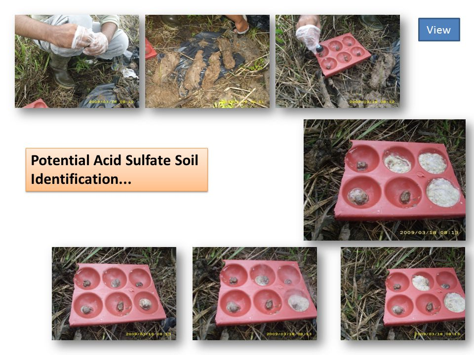 Potential Acid Sulfate Soil Identification... View