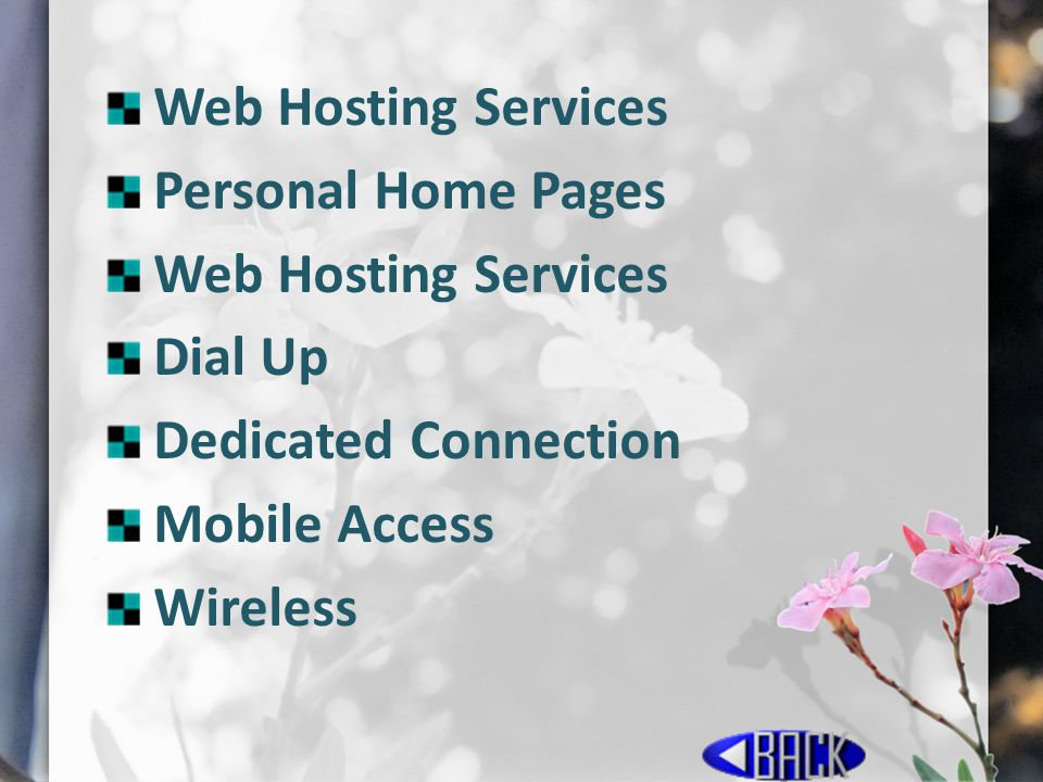 Web Hosting Services Personal Home Pages Web Hosting Services Dial Up Dedicated Connection Mobile Access Wireless