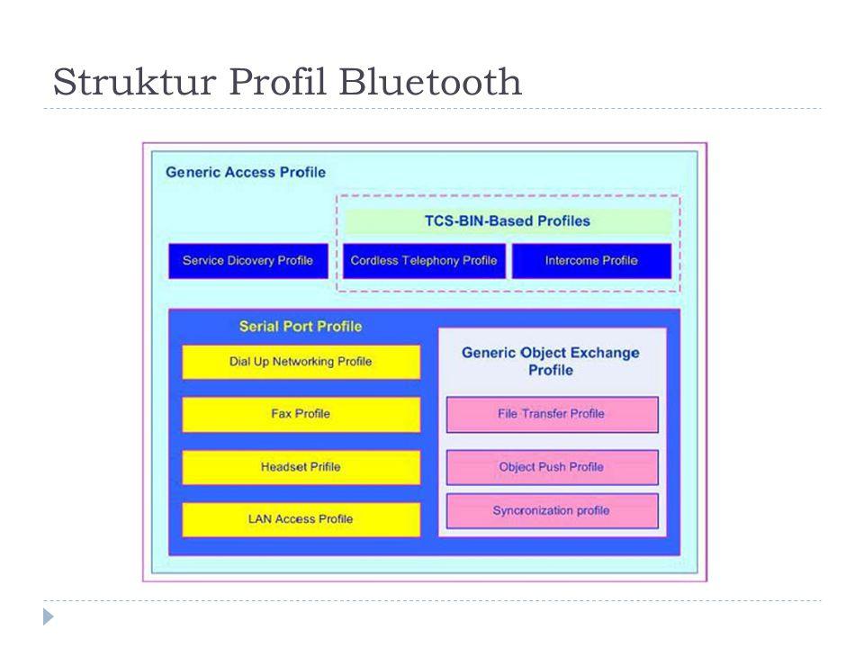 Struktur Profil Bluetooth
