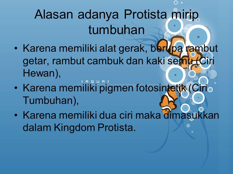 Alasan adanya Protista mirip tumbuhan Karena memiliki alat gerak, berupa rambut getar, rambut cambuk dan kaki semu (Ciri Hewan), Karena memiliki pigme