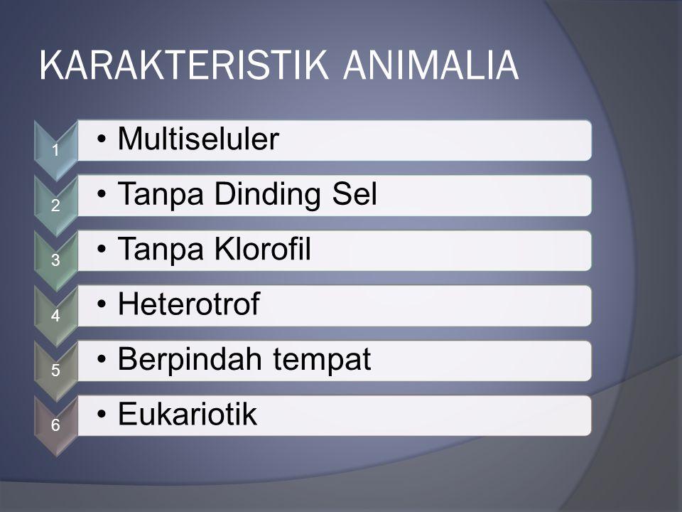 KARAKTERISTIK ANIMALIA 1 Multiseluler 2 Tanpa Dinding Sel 3 Tanpa Klorofil 4 Heterotrof 5 Berpindah tempat 6 Eukariotik