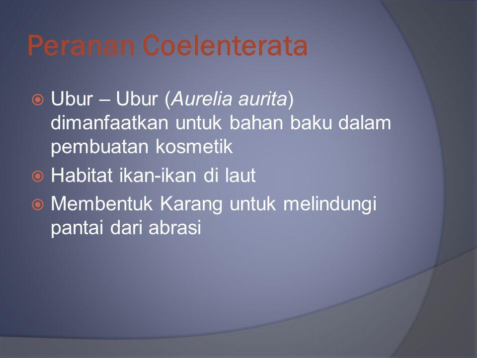Peranan Coelenterata  Ubur – Ubur (Aurelia aurita) dimanfaatkan untuk bahan baku dalam pembuatan kosmetik  Habitat ikan-ikan di laut  Membentuk Kar