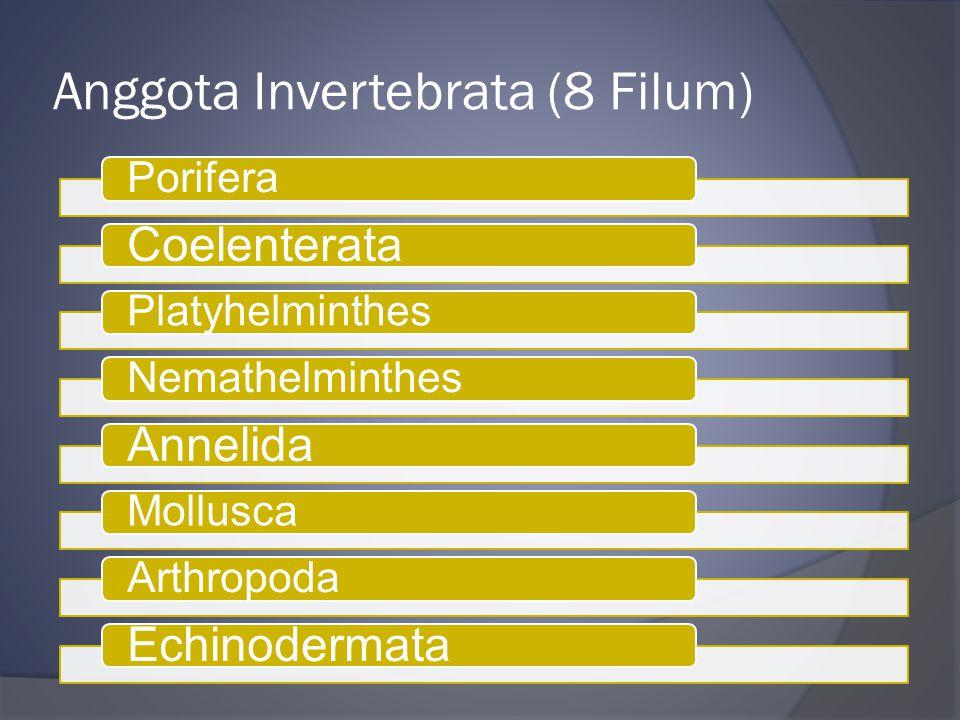 Anggota Invertebrata (8 Filum) Porifera Coelenterata PlatyhelminthesNemathelminthes Annelida MolluscaArthropoda Echinodermata