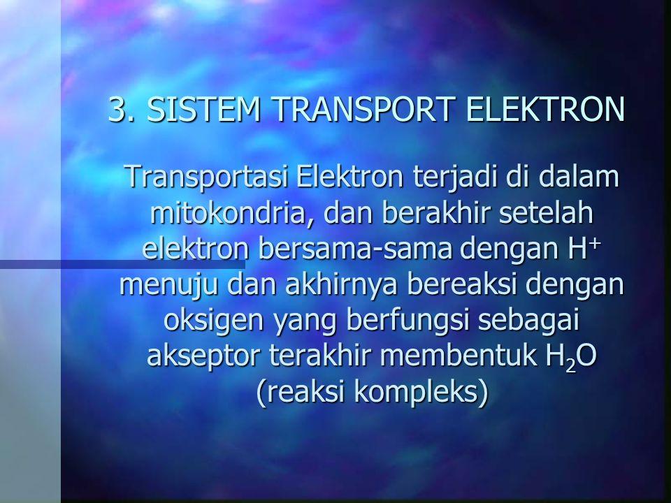 3. SISTEM TRANSPORT ELEKTRON Transportasi Elektron terjadi di dalam mitokondria, dan berakhir setelah elektron bersama-sama dengan H + menuju dan akhi