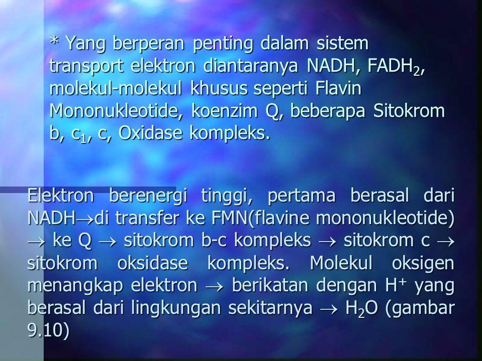* Yang berperan penting dalam sistem transport elektron diantaranya NADH, FADH 2, molekul-molekul khusus seperti Flavin Mononukleotide, koenzim Q, beb