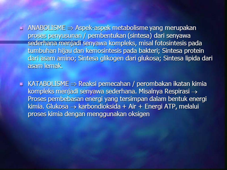 RESPIRASI SEL merupakan proses-proses enzimatis di dalam sel dimana molekul-molekul karbohidrat, asam lemak dan asam amino diuraikan menjadi karbondioksida dan air dengan konservasi energi dalam bentuk ATP (adenosin trifosfat) RESPIRASI SEL merupakan proses-proses enzimatis di dalam sel dimana molekul-molekul karbohidrat, asam lemak dan asam amino diuraikan menjadi karbondioksida dan air dengan konservasi energi dalam bentuk ATP (adenosin trifosfat) Prosesnya terjadi dalam mitokondria.