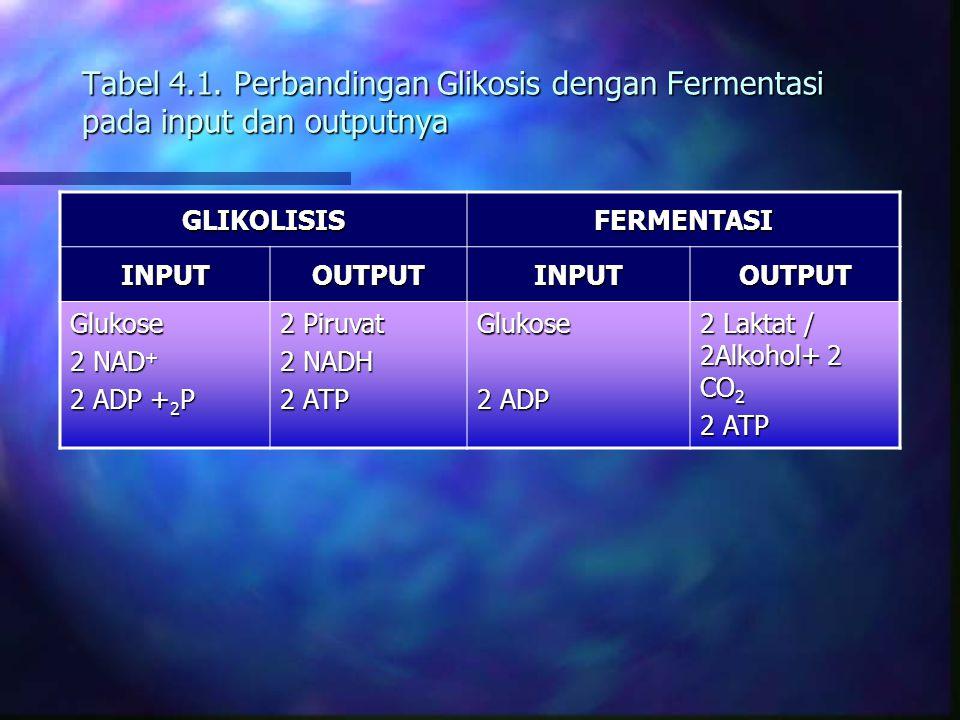 Tabel 4.1. Perbandingan Glikosis dengan Fermentasi pada input dan outputnya GLIKOLISISFERMENTASI INPUTOUTPUTINPUTOUTPUT Glukose 2 NAD + 2 ADP + 2 P 2