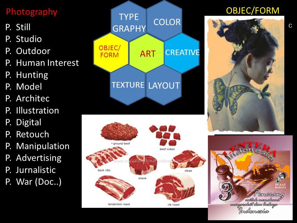 ART COLOR TYPE GRAPHY TEXTURE LAYOUT CREATIVE OBJEC/ FORM P. Still P. Studio P. Outdoor P. Human Interest P. Hunting P. Model P. Architec P. Illustrat