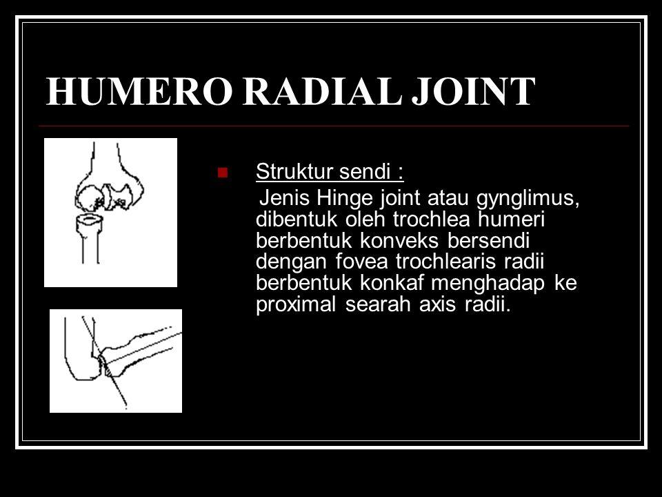 HUMERO RADIAL JOINT Struktur sendi : Jenis Hinge joint atau gynglimus, dibentuk oleh trochlea humeri berbentuk konveks bersendi dengan fovea trochlearis radii berbentuk konkaf menghadap ke proximal searah axis radii.
