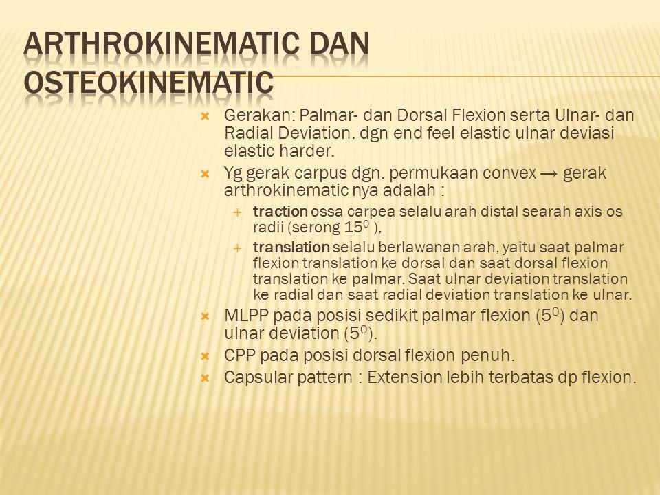  Gerakan: Palmar- dan Dorsal Flexion serta Ulnar- dan Radial Deviation.
