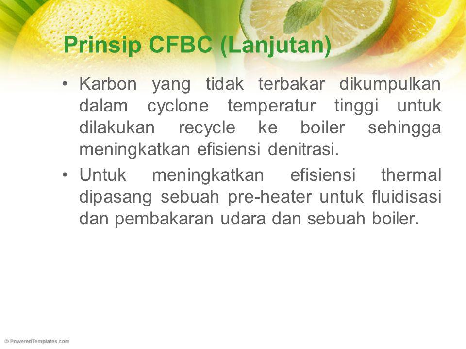 Prinsip CFBC (Lanjutan) Karbon yang tidak terbakar dikumpulkan dalam cyclone temperatur tinggi untuk dilakukan recycle ke boiler sehingga meningkatkan efisiensi denitrasi.