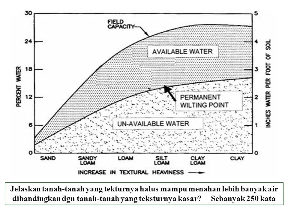 Jelaskan tanah-tanah yang tekturnya halus mampu menahan lebih banyak air dibandingkan dgn tanah-tanah yang teksturnya kasar? Sebanyak 250 kata