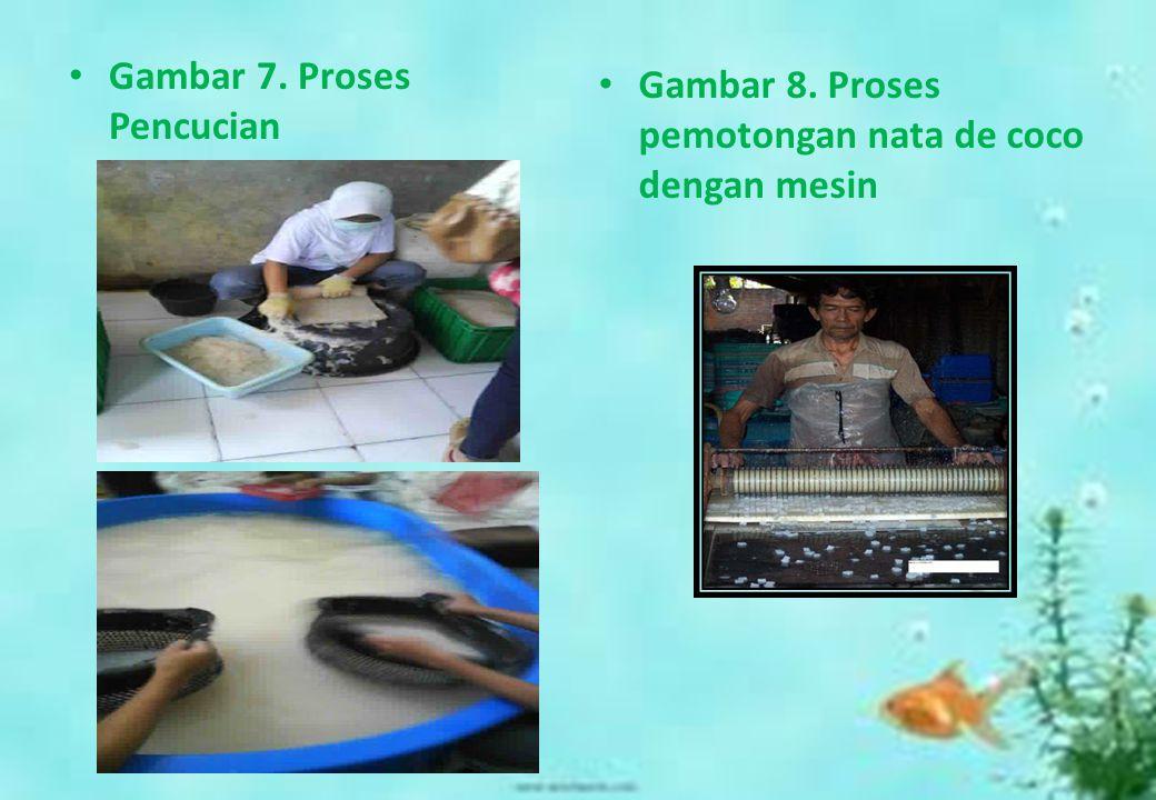Gambar 7. Proses Pencucian Gambar 8. Proses pemotongan nata de coco dengan mesin