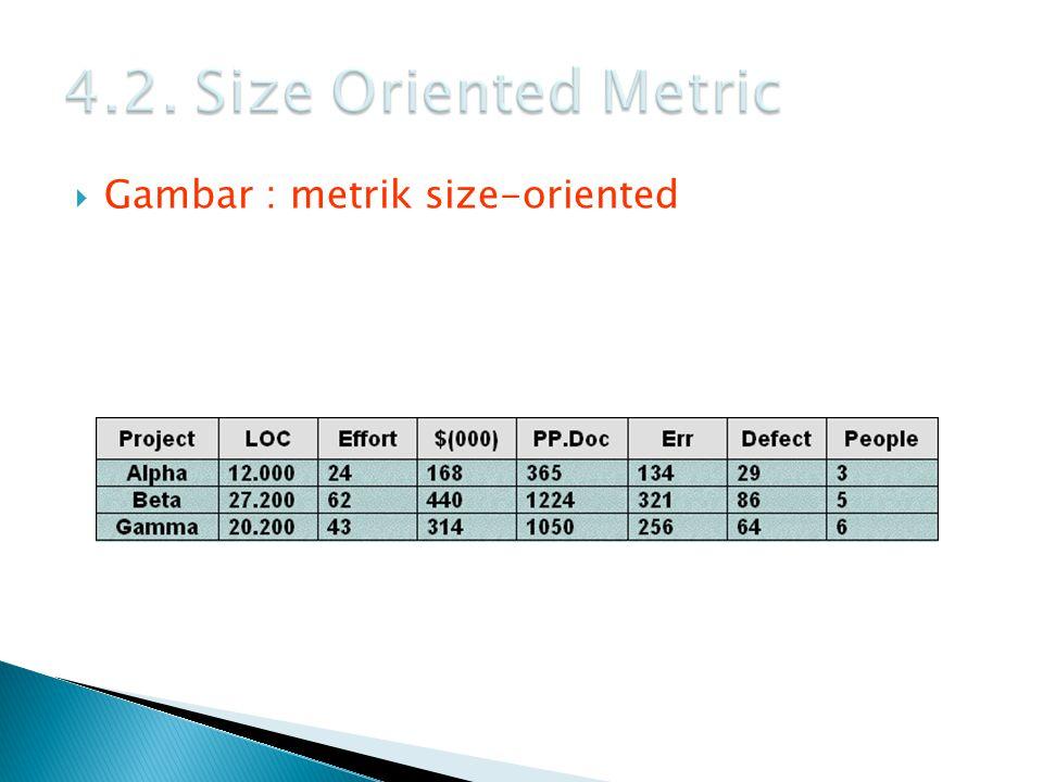  Gambar : metrik size-oriented