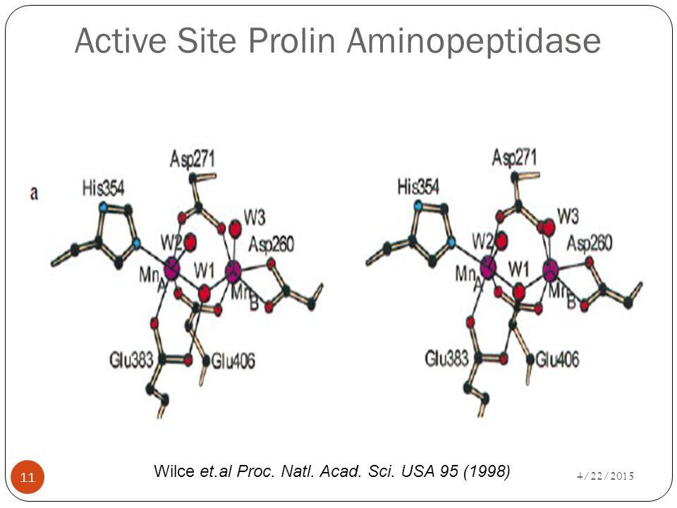4/22/2015 11 Active Site Prolin Aminopeptidase Wilce et.al Proc. Natl. Acad. Sci. USA 95 (1998)