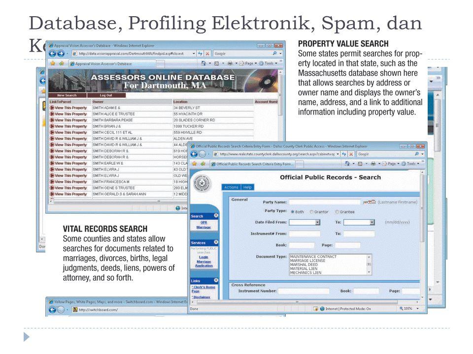 Database, Profiling Elektronik, Spam, dan Kegiatan Pemasaran Lainnya