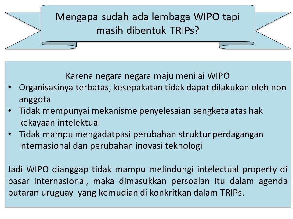Mengapa sudah ada lembaga WIPO tapi masih dibentuk TRIPs.