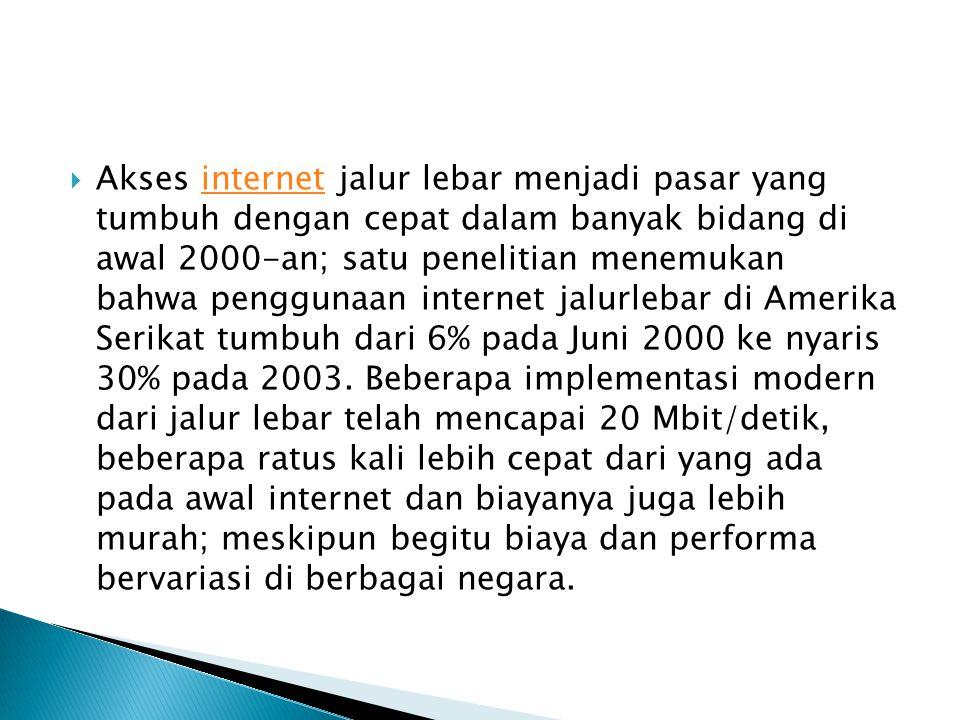  Akses internet jalur lebar menjadi pasar yang tumbuh dengan cepat dalam banyak bidang di awal 2000-an; satu penelitian menemukan bahwa penggunaan internet jalurlebar di Amerika Serikat tumbuh dari 6% pada Juni 2000 ke nyaris 30% pada 2003.