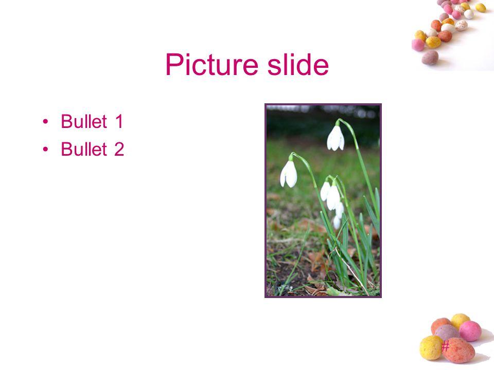# Picture slide Bullet 1 Bullet 2