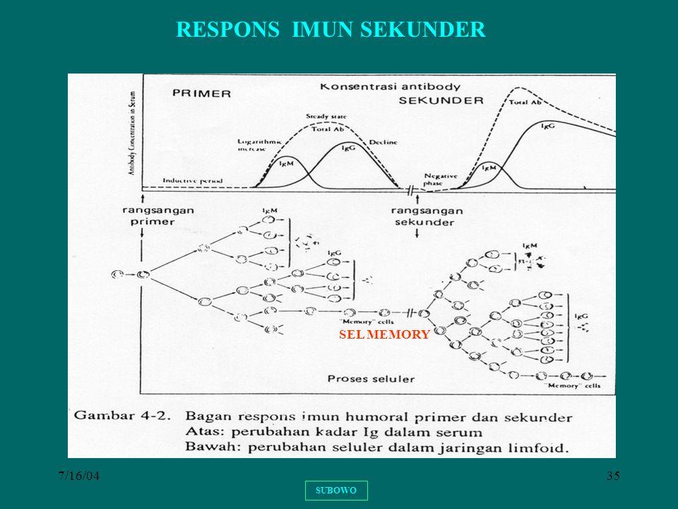 7/16/0435 RESPONS IMUN SEKUNDER SUBOWO SEL MEMORY