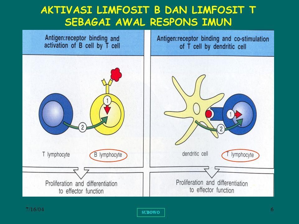 7/16/0427 PENENTUAN BENTUK RESPONS IMUN ADAPTIF TH1TH1 TH2TH2 SELULAR HUMORAL IFN- , LT, TNF-  IL-4, IL-5, IL-10.
