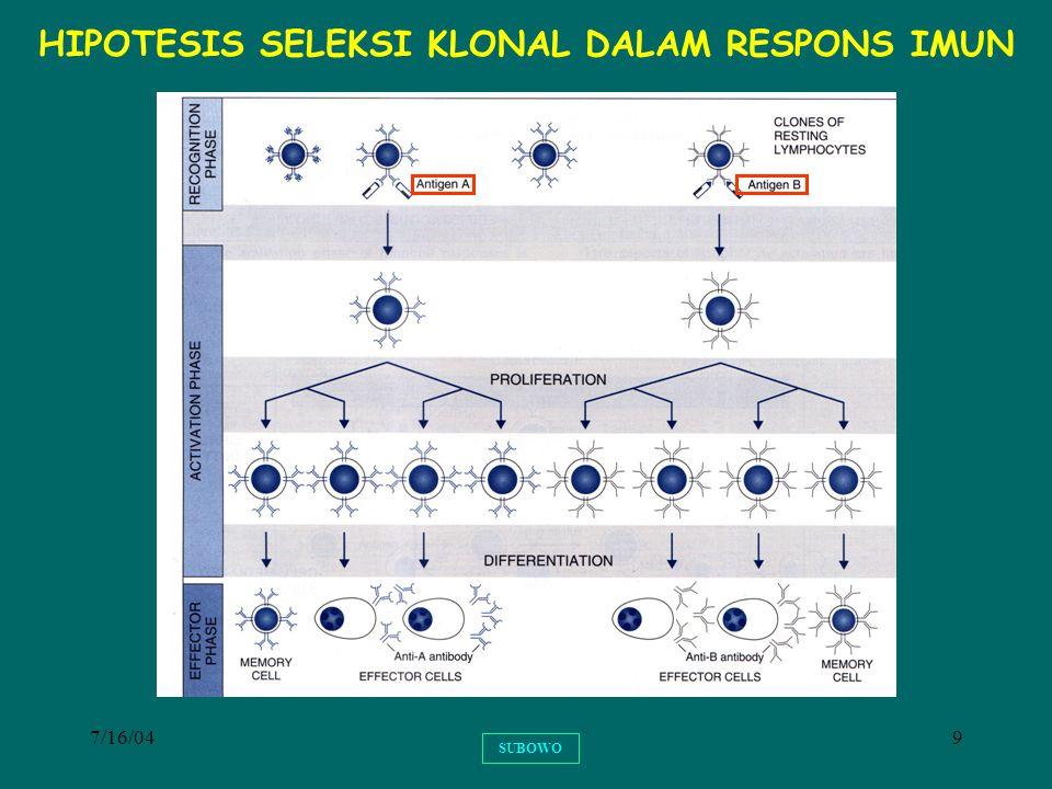 7/16/049 SUBOWO HIPOTESIS SELEKSI KLONAL DALAM RESPONS IMUN