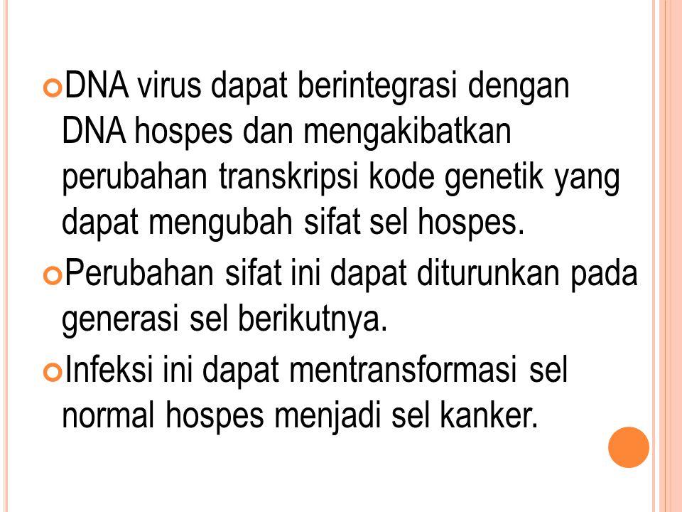 DNA virus dapat berintegrasi dengan DNA hospes dan mengakibatkan perubahan transkripsi kode genetik yang dapat mengubah sifat sel hospes.