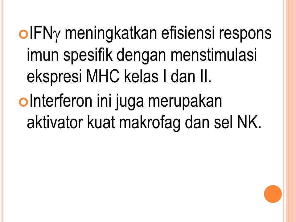 IFN  meningkatkan efisiensi respons imun spesifik dengan menstimulasi ekspresi MHC kelas I dan II. Interferon ini juga merupakan aktivator kuat makro