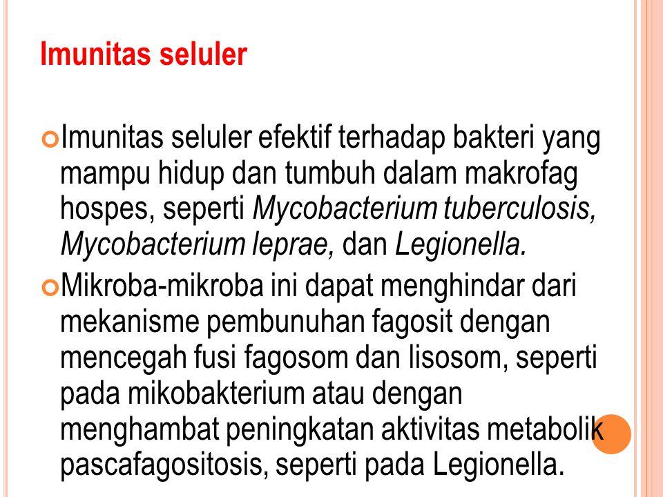 Imunitas seluler Imunitas seluler efektif terhadap bakteri yang mampu hidup dan tumbuh dalam makrofag hospes, seperti Mycobacterium tuberculosis, Mycobacterium leprae, dan Legionella.