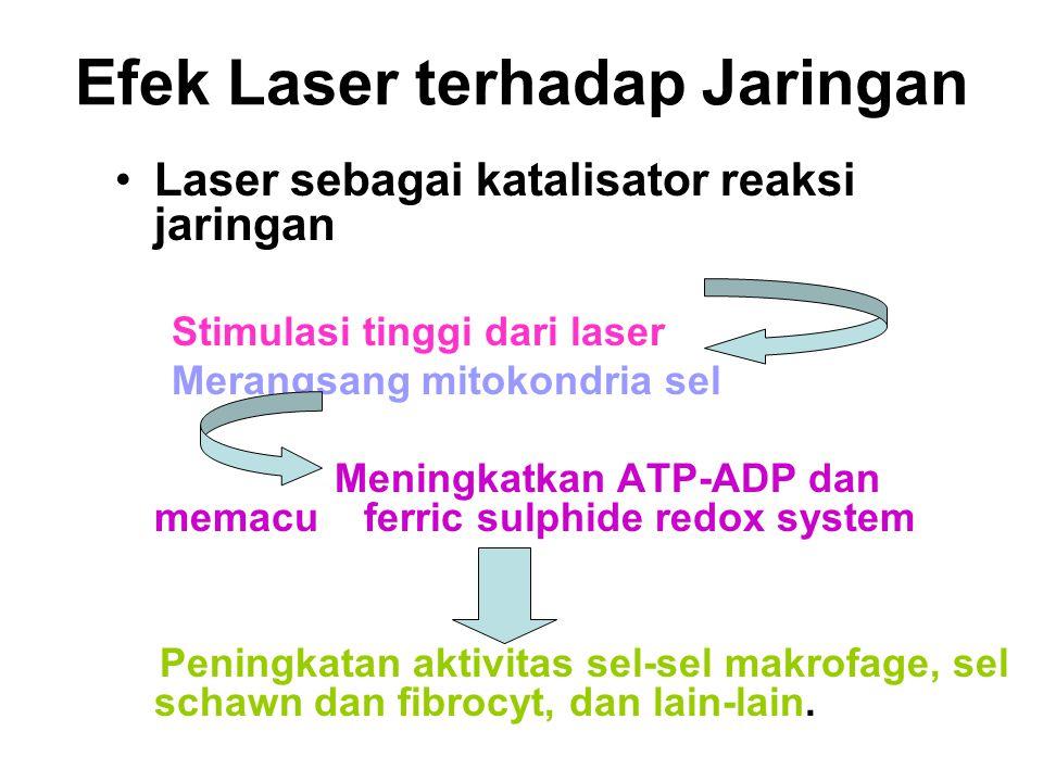 Efek Laser terhadap Jaringan Laser sebagai katalisator reaksi jaringan Stimulasi tinggi dari laser Merangsang mitokondria sel Meningkatkan ATP-ADP dan