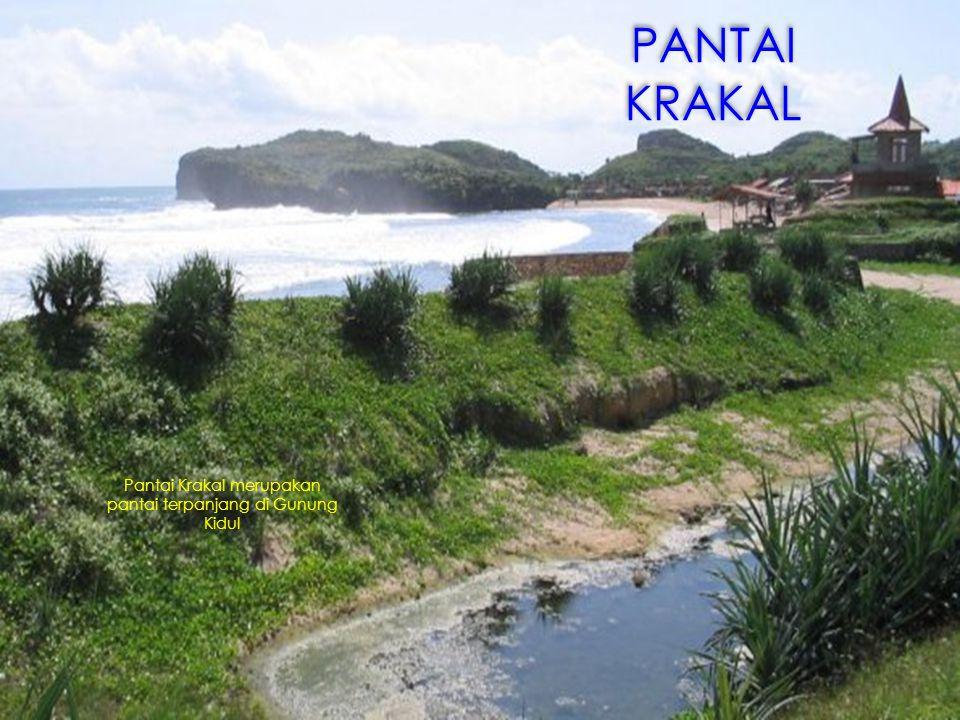 Pantai Krakal merupakan pantai terpanjang di Gunung Kidul PANTAI KRAKAL