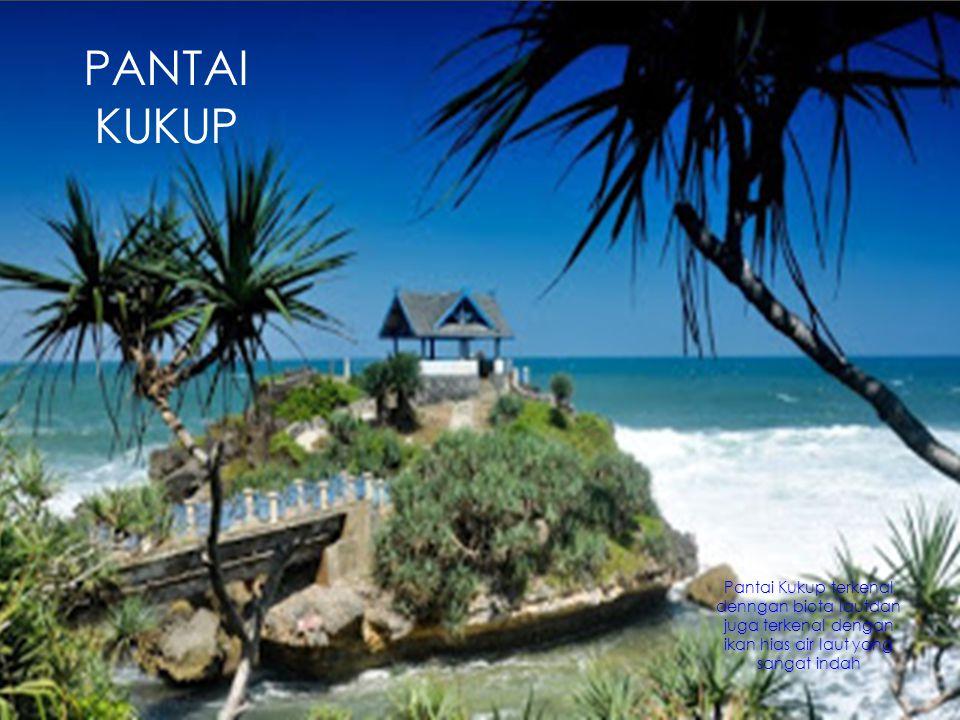 PANTAI KUKUP Pantai Kukup terkenal denngan biota lautdan juga terkenal dengan ikan hias air laut yang sangat indah