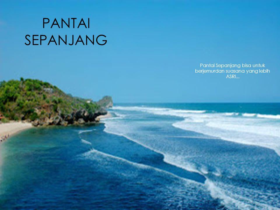PANTAI SEPANJANG Pantai Sepanjang bisa untuk berjemurdan suasana yang lebih ASRI...