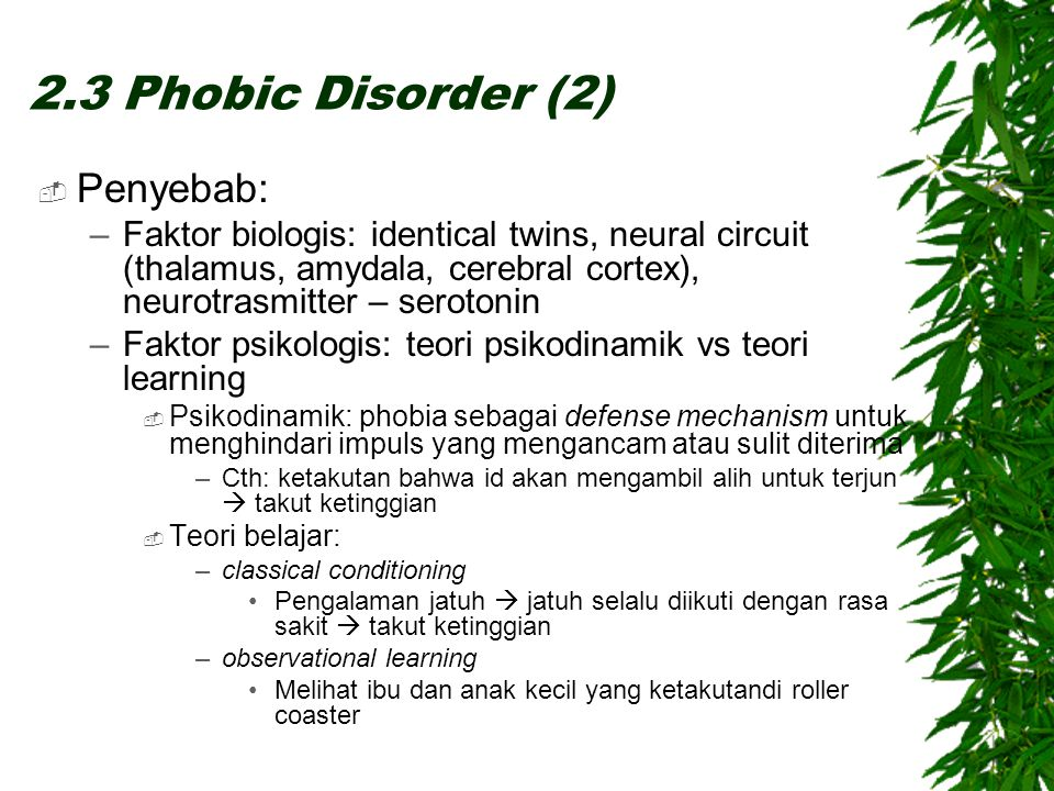  Penyebab: –Faktor biologis: identical twins, neural circuit (thalamus, amydala, cerebral cortex), neurotrasmitter – serotonin –Faktor psikologis: te