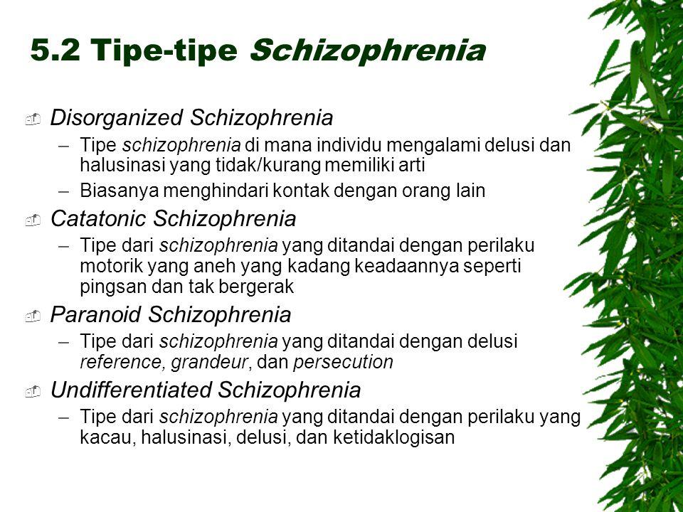 5.2 Tipe-tipe Schizophrenia  Disorganized Schizophrenia –Tipe schizophrenia di mana individu mengalami delusi dan halusinasi yang tidak/kurang memiliki arti –Biasanya menghindari kontak dengan orang lain  Catatonic Schizophrenia –Tipe dari schizophrenia yang ditandai dengan perilaku motorik yang aneh yang kadang keadaannya seperti pingsan dan tak bergerak  Paranoid Schizophrenia –Tipe dari schizophrenia yang ditandai dengan delusi reference, grandeur, dan persecution  Undifferentiated Schizophrenia –Tipe dari schizophrenia yang ditandai dengan perilaku yang kacau, halusinasi, delusi, dan ketidaklogisan