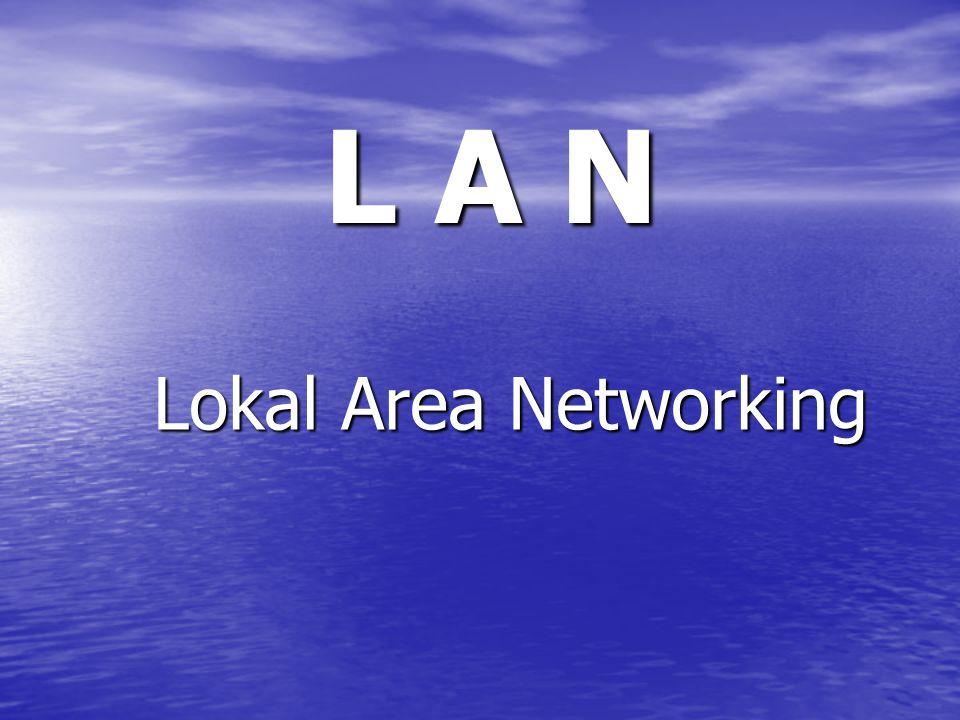 Apa itu LAN .