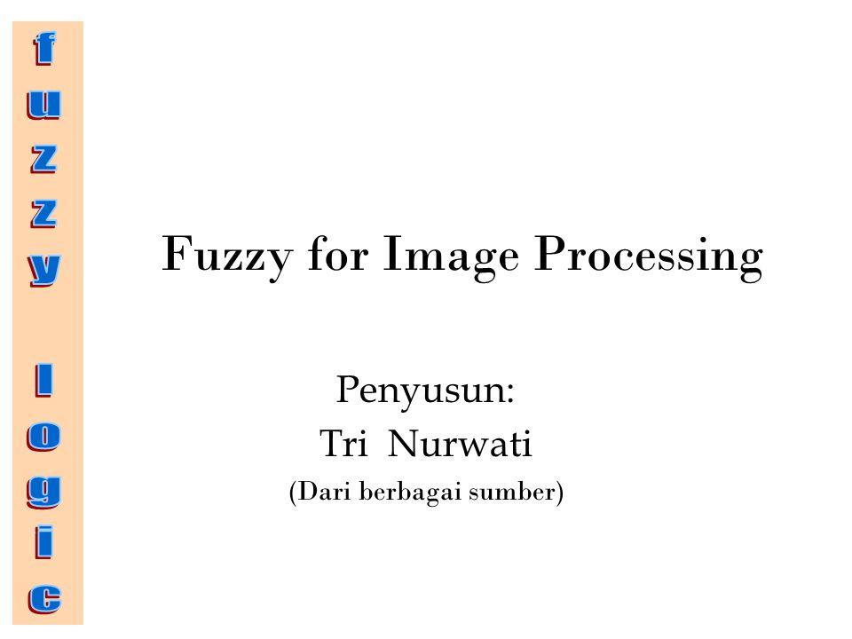 Fuzzy for Image Processing Penyusun: Tri Nurwati (Dari berbagai sumber)