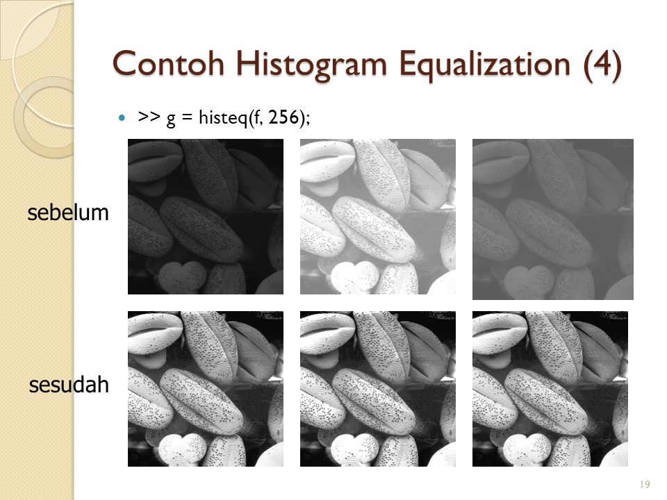 Contoh Histogram Equalization (4) >> g = histeq(f, 256); 19 sebelum sesudah