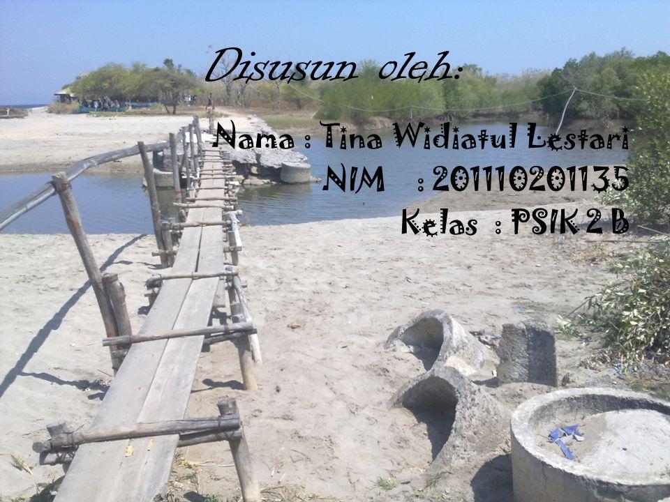 Disusun oleh: Nama : Tina Widiatul Lestari NIM : 201110201135 Kelas : PSIK 2 B