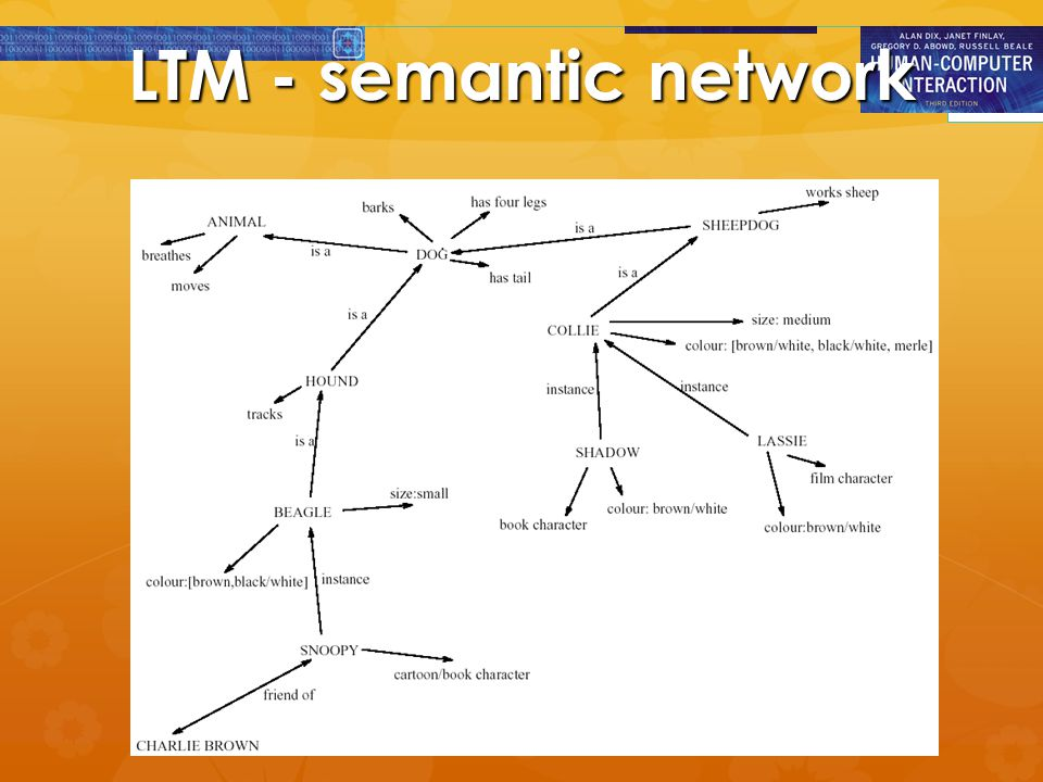 LTM - semantic network
