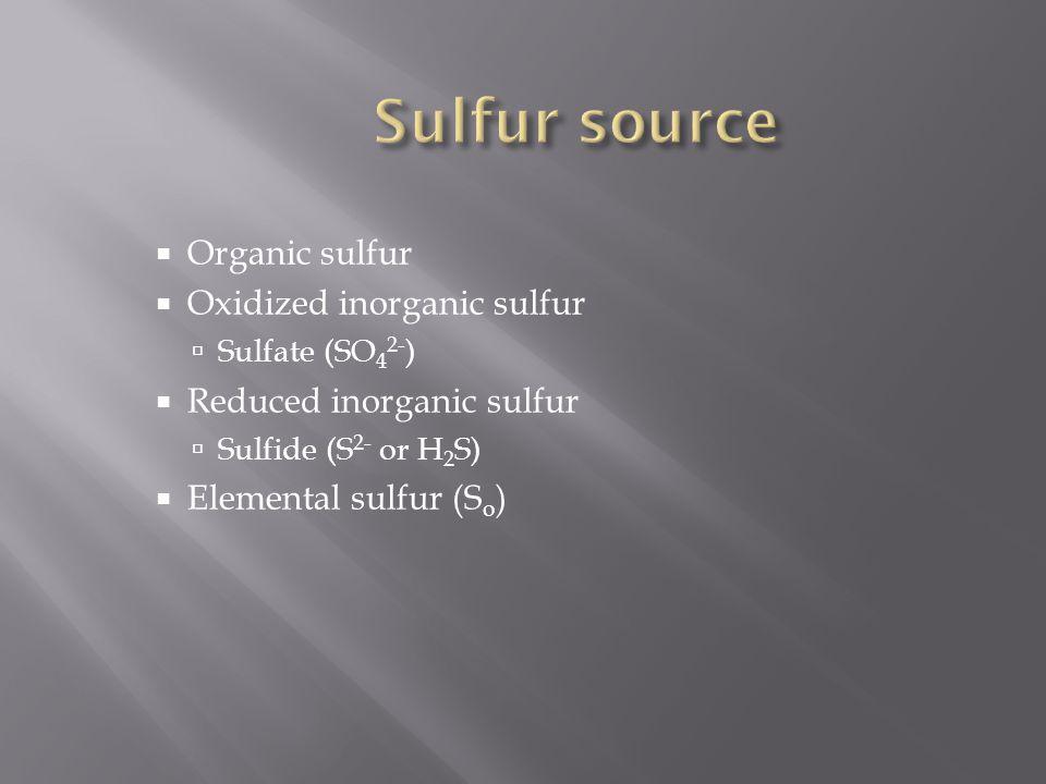  Organic sulfur  Oxidized inorganic sulfur  Sulfate (SO 4 2- )  Reduced inorganic sulfur  Sulfide (S 2- or H 2 S)  Elemental sulfur (S o )