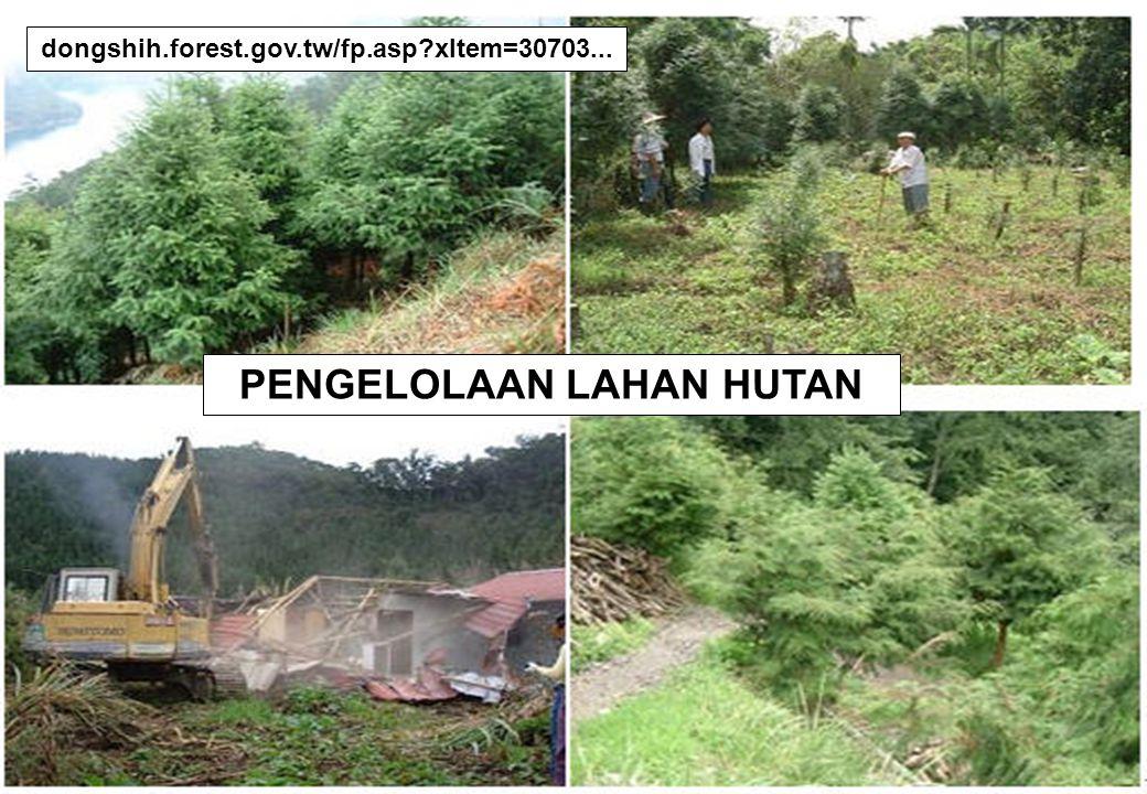 19 dongshih.forest.gov.tw/fp.asp?xItem=30703... PENGELOLAAN LAHAN HUTAN