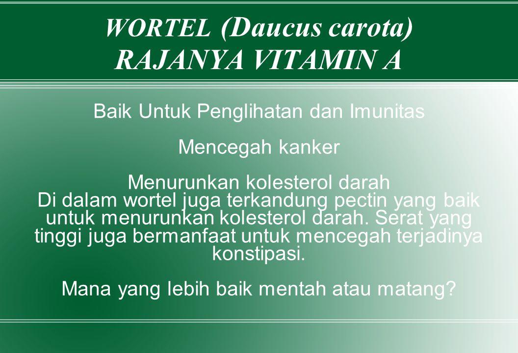 WORTEL (Daucus carota) RAJANYA VITAMIN A Baik Untuk Penglihatan dan Imunitas Mencegah kanker Menurunkan kolesterol darah Di dalam wortel juga terkandu
