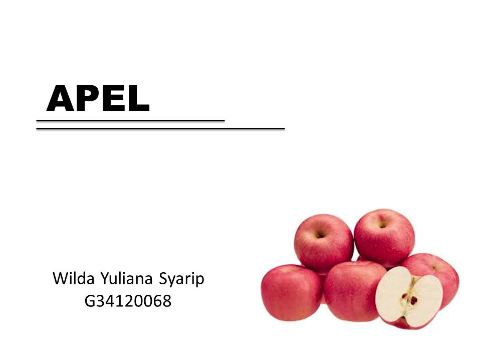Wilda Yuliana Syarip G34120068 APEL