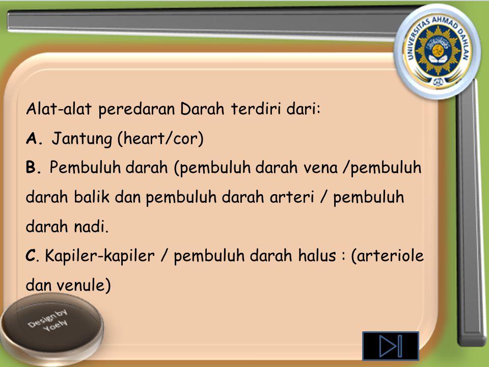 Alat-alat peredaran Darah terdiri dari: A.Jantung (heart/cor) B.