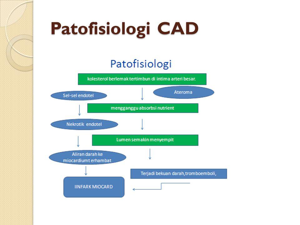 Patofisiologi CAD