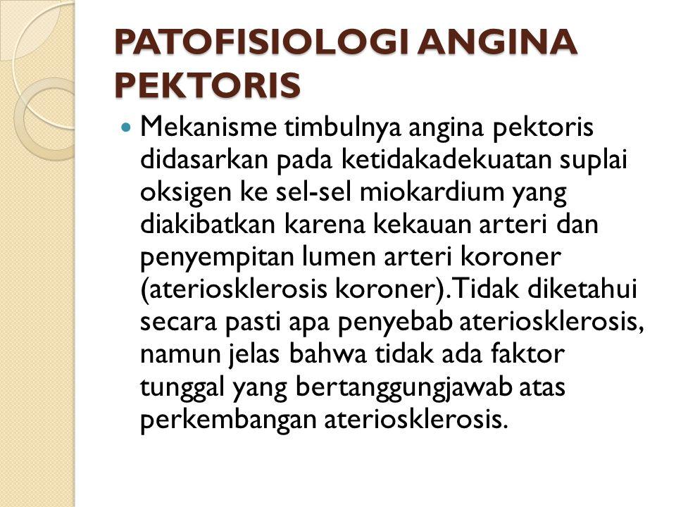 PATOFISIOLOGI ANGINA PEKTORIS Mekanisme timbulnya angina pektoris didasarkan pada ketidakadekuatan suplai oksigen ke sel-sel miokardium yang diakibatkan karena kekauan arteri dan penyempitan lumen arteri koroner (ateriosklerosis koroner).