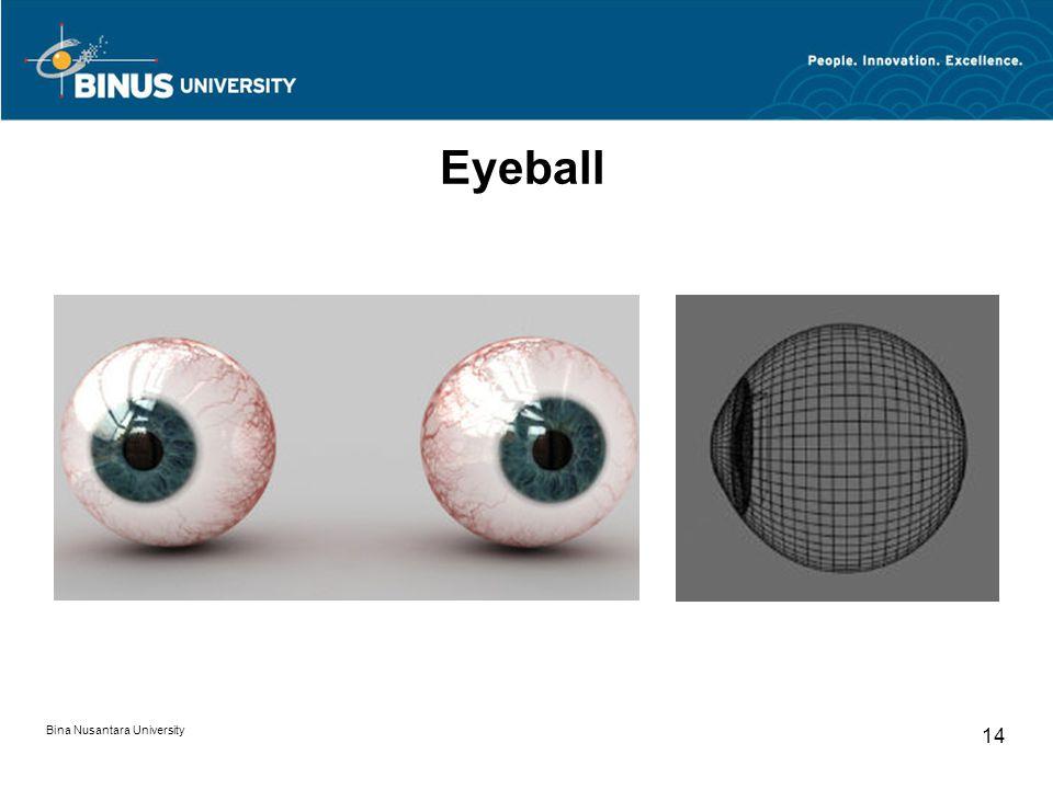 Bina Nusantara University 14 Eyeball