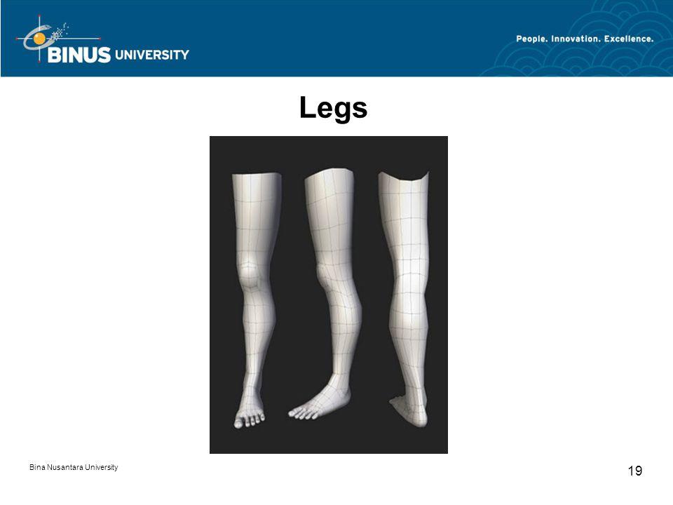 Bina Nusantara University 19 Legs