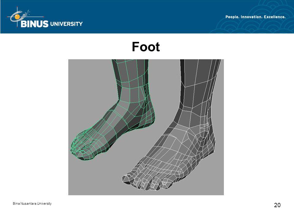Bina Nusantara University 20 Foot